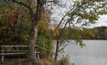 Milne Dam Conservation Area