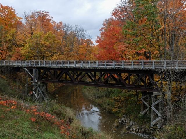 wyevale-bridge2