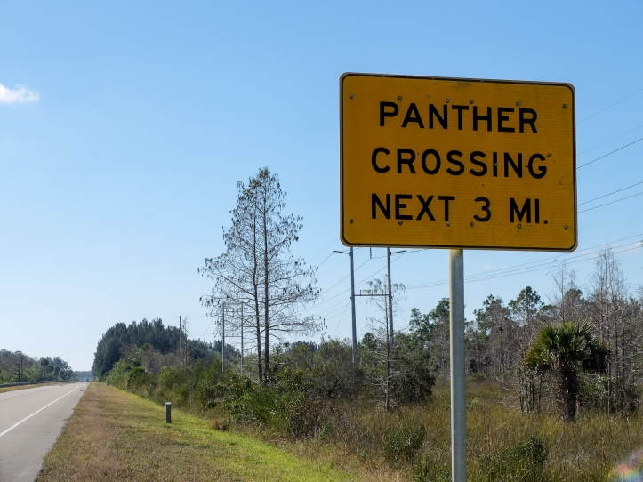 panther-sign