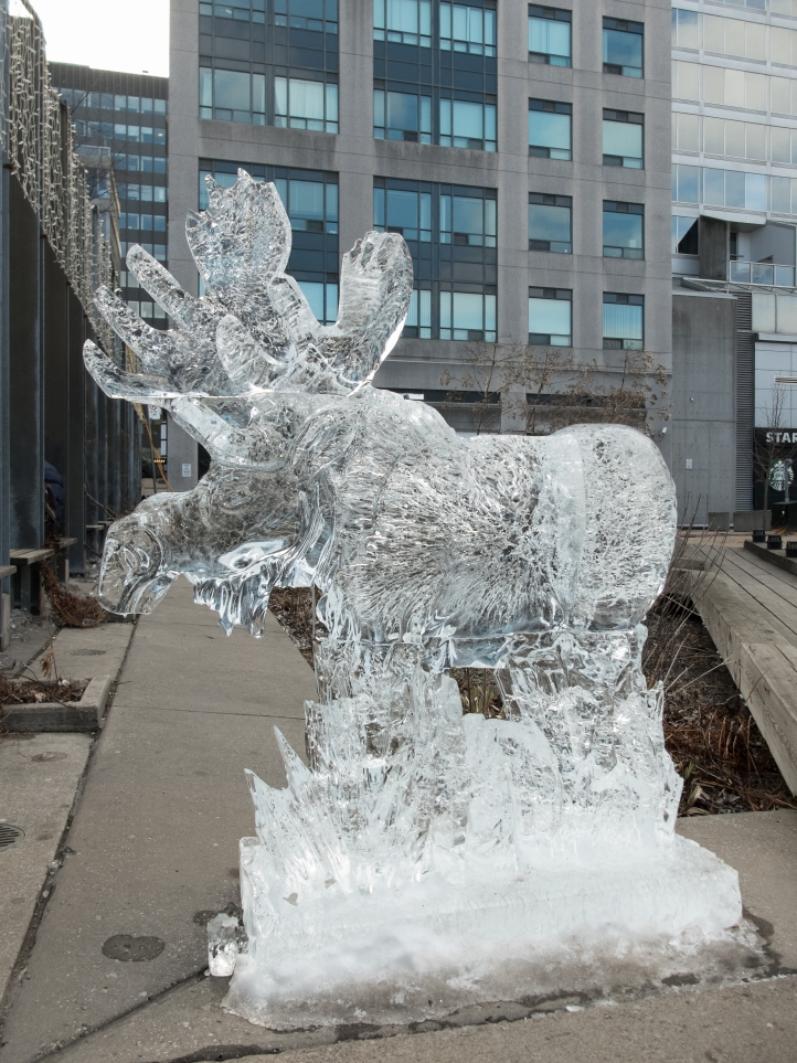 ice-fest-2