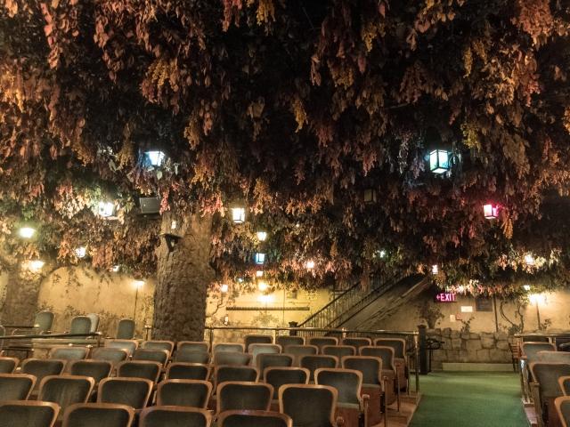 Elgin & Winter Garden Theatre20