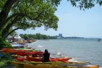 Paddlefest at Sunnyside Beach