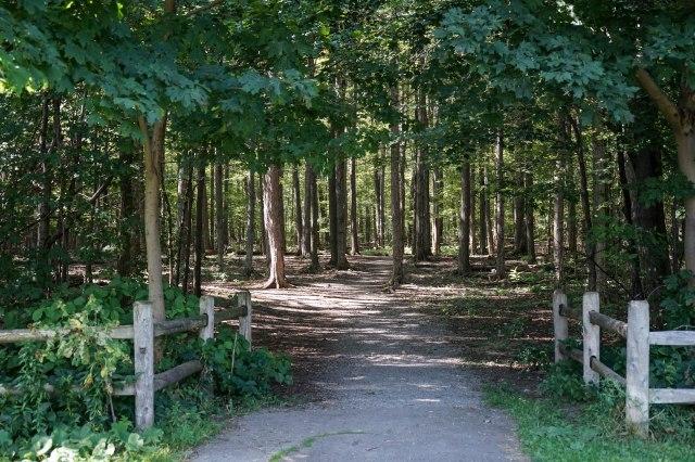 Brimley Woods