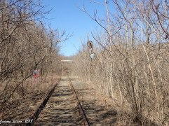 2017 - Toronto ... abandoned rail line by the Brick Works