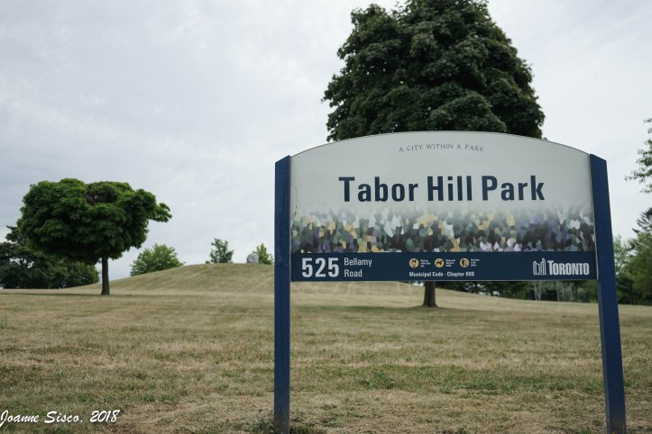 Taber Hill 6