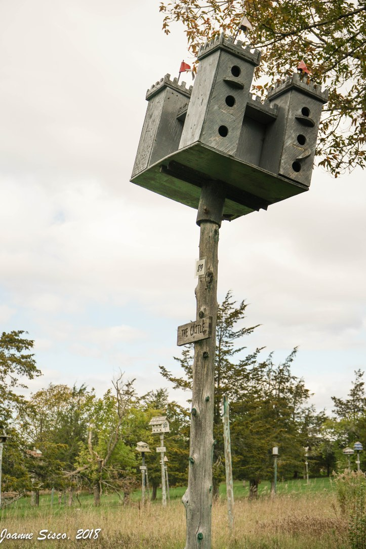 Birdhouse City - 3