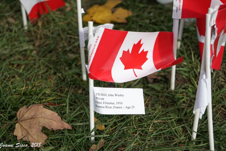 Remembrance Day 9